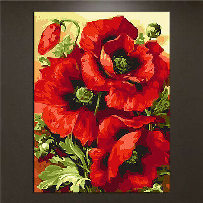 DIY Poppy Flower Oil Painting By Numbers Acrylic Drawing On Canvas Home Decor