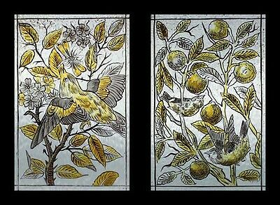 Stunning Victorian Antique Painted Botanicals With Birds Stained Glass Windows