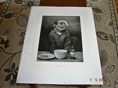 Antique Bulldog Lithograph Print, INDISPOSED, Painted by Harker