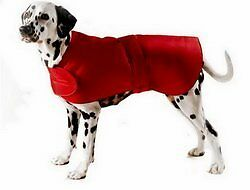 Cosipet All Weather Coat 46 cm Red