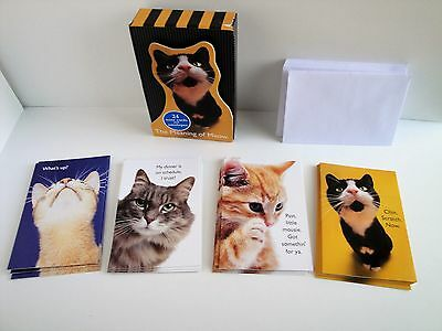 Meaning of Meow Cat 24 Humorous Note Cards 4 Designs Unused