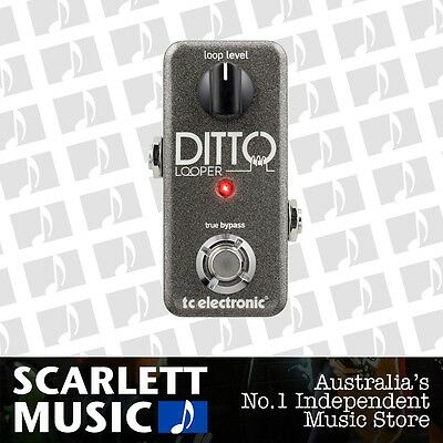 TC Electronic Ditto Intuitive Looper Effects Pedal *BRAND NEW*