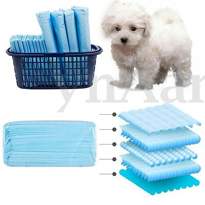 Indoor Puppy Pet Dog Cat Toilet Pee Training Pads Absorbent Diapers 10-100 PCS