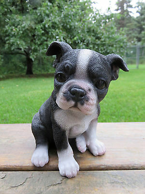 BOSTON TERRIER PUPPY DOG FIGURINE resin animal Statue PET SITTING  ORNAMENT NEW