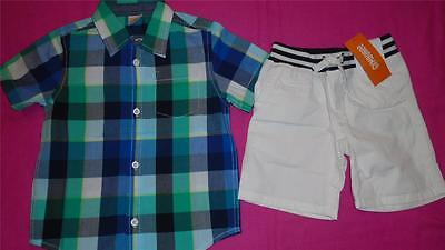 NEW Boys Size 2T Gymboree Outfit White Shorts & Button Down Shirt  RP $51 NWT