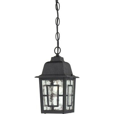 "Nuvo Banyan 1 Light 11"" Outdoor Hanging, Clear Glass, Text. Black - 60-4933"