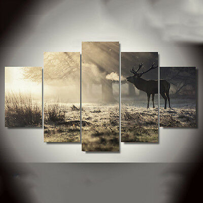 5PCS Elk Modern Art Oil Paintings Canvas Print Wall Unframed Pictures Home Decor