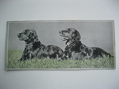"""VINTAGE 1920's SMALL  8"""" by 3 5/8"""" DOGS CALENDAR SAMPLE PRINT LITHO #14"""