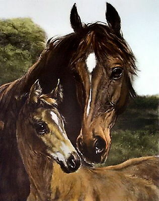 Equestrian Art Print Bay Mare Horse with Young Foal Mother & Son Portrait