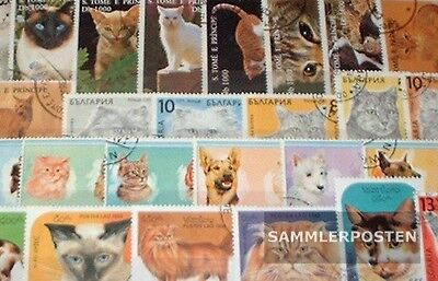 Motives 50 different Cats stamps