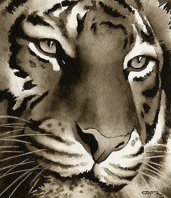 TIGER Watercolor ART Print Signed by Artist DJR