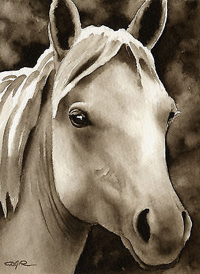 HORSE Watercolor ART Print Signed by Artist DJR