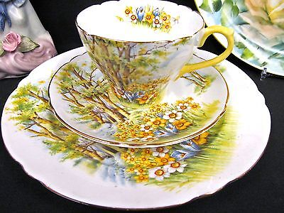 Shelley Tea cup and Saucer DAFFODIL TIME pattern teacup yellow meadow floral