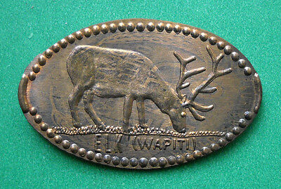 Elk elongated penny USA cent US Wapiti souvenir coin Shawnee