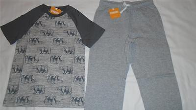 NEW Boys Size 7-8 Gymboree Outfit Bear Shirt & Gray Sweatpants NWT