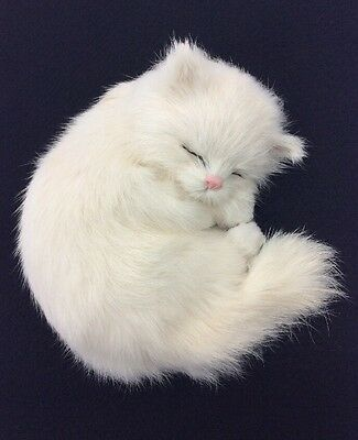 Life Like White Kitten Figure Curled Up Sleeping (Rabbit Fur) Pink Nose