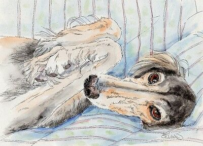 SALUKI NAP Original Watercolor on Ink Print Matted 11x14 Ready to Frame