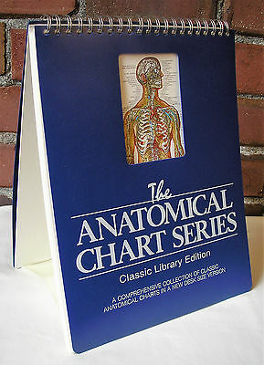 Anatomical Chart Series Classic Library ed Laminated Easel Desk Medical Anatomy