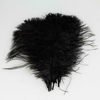 "20 PCS Wholesale Quality Natural OSTRICH FEATHERS ""12-14"" White and Black Color"
