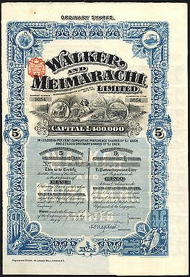 Egypt, Walker and Meimarachi, Ltd., 5 shares of £1, 1906, department store Cairo