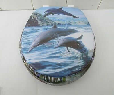 1X New Dolphin Soft Toilet Seat & Cover 43cm Long