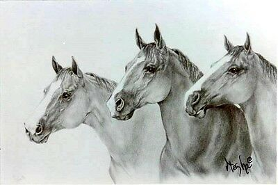 """Limited Edition HORSE ART PRINT """"Quarter Horse Beauties"""" S/N by Artist 17"""" X 22"""