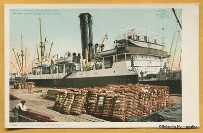 LA New Orleans Cotton Steamer Postcard