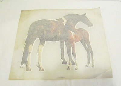 HORSE MOTHER & BABY 1970's VINTAGE IRON ON T-SHIRT HEAT TRANSFER UNUSED PONY