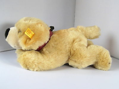 wie Neu : STEIFF golden Labrador / Retriever K + F  American Kennel Club  26 cm