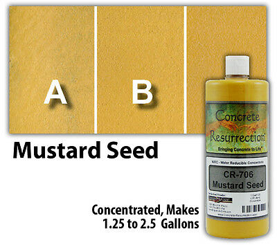 Professional Easy to Apply Water Based Concrete Stain - Mustard Seed