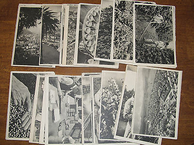 Brazil National Coffee Department Lot of 53 Vintage Postcards