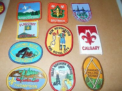 (Yj1-R) Ten  Listed Canadian Scout Badges