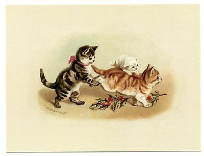 modern cat postcard Maguire cute tabby cats play game of Wheelbarrow