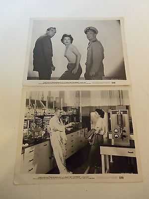 1955 Lot 2 Photos IT CAME FROM BENEATH THE SEA Kenneth Tobey Faith Domergue