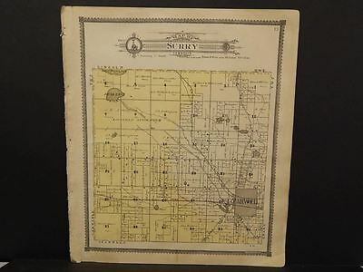 Michigan Clare County Map Surry Township c.1905    J14#34