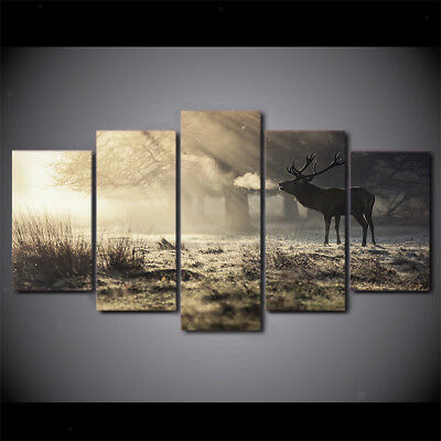5Pcs Canvas Home Decor Wall Abstract Art Painting Picture Sunshine Elk S
