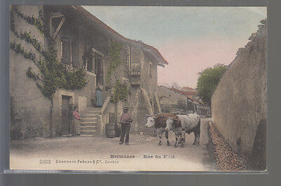 CPA  SUISSE  Hermance  Rue du Midi  Animation