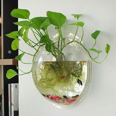 Home Living Room Decor Ball Glass Wall Hanging Flower Plant Vase Container wxf