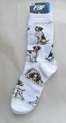 4Bare Adult Size BRITTANY SPANIEL Poses Socks size Medium 6-11