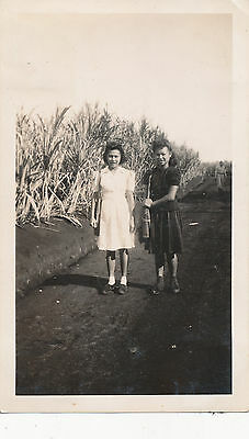 WWII 1942-3 Schofield AAA soldiers at sugar plantation Hawaii 2 Photos of Gals