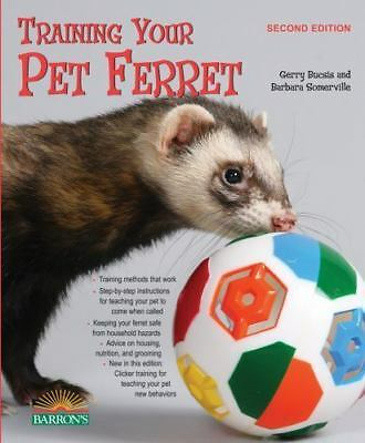 Training Your Pet Ferret  VeryGood