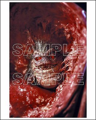 CRITTERS 4 8X10 photo 01 cult horror comedy