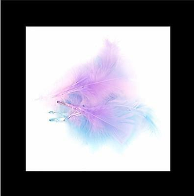 Feathers - Pastel - Pink/Light Blue/Lilac - 10 grams
