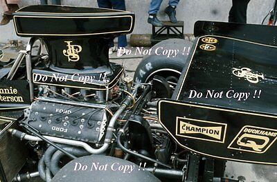 Ronnie Peterson JPS Lotus 72E British Grand Prix 1974 Photograph 6