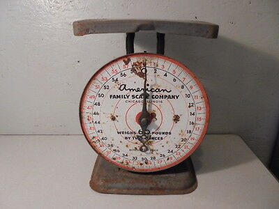 Vintage American Family Scale Company Kitchen Scale 60 Lb - Grey - Works