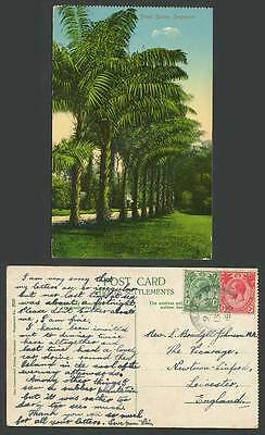 Singapore Straits Settlements KGV 1c3c 1915 Old Postcard Street Scene Palm Trees