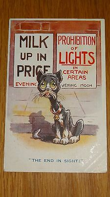 WW1 Comic Postcard by Dudley Buxton: cat , Rationing & Light Prohibition Theme