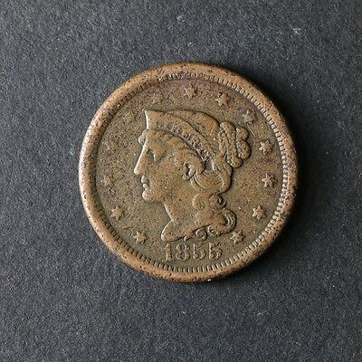 1855 Large Cent Great Deals From The TECC Bargain Bin
