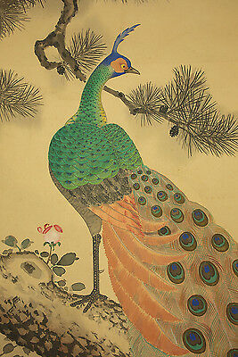 """JAPANESE HANGING SCROLL """"Two Peafowls and Pine Tree""""  @b462"""