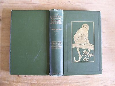 NEW ILLUSTRATED NATURAL HISTORY OF THE WORLD BY ERNEST PROTHEROE c1910